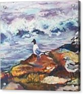Stormwatch IIi Acrylic Print
