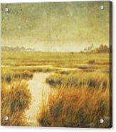 Stormy Marsh Acrylic Print