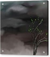 Stormy Weather Acrylic Print