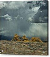 Stormy Wet Acrylic Print