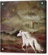 Storybook Stallion Acrylic Print