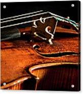 Stradivarius Acrylic Print