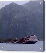 Straits Of Magellan Iv Acrylic Print