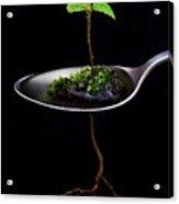 Strange Spring Acrylic Print