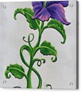 Strangler Hibiscus Acrylic Print