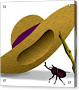 Straw Hat And Horn Beetle Acrylic Print
