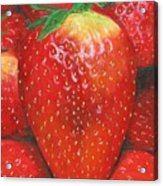 Strawberries Acrylic Print