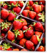 Strawberries With Green Weed In Plastic Containers  Acrylic Print
