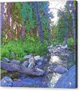 Strawberry Creek 1859 Acrylic Print