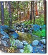 Strawberry Creek 1884 Acrylic Print