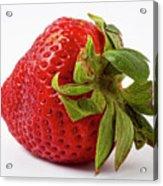 Strawberry Macro Acrylic Print