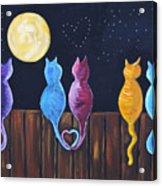 Stray Cats In Moonlight Acrylic Print