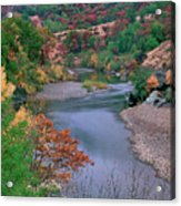 Stream And Fall Color In Central California Acrylic Print
