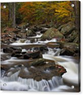 Stream At Ricketts Glen Acrylic Print by Robert Wirth