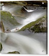 Stream In Motion Acrylic Print by Jim DeLillo