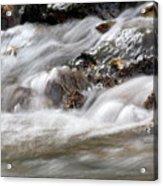 Stream Nature Spring Scene Acrylic Print