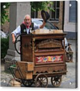 Street Entertainer In Bruges Belgium Acrylic Print