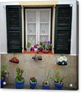 Street Flower Art Acrylic Print