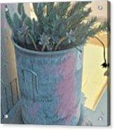 Street Planter Acrylic Print