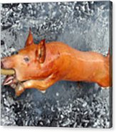 Street Roast 5 Acrylic Print