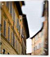 Streets Of Siena Acrylic Print
