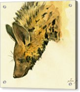 Striped Hyena Animal Art Acrylic Print