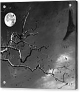 Stroke Of Midnight Acrylic Print