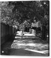 Stroll To Store Acrylic Print