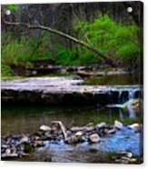 Strolling By The Stream Acrylic Print