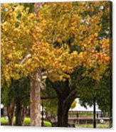 Strolling In Waterfront Park Acrylic Print
