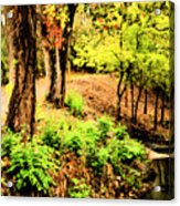 Strolling Through The Park Acrylic Print by Savannah Fonner