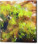 Structure Of Wooden Log Covered With Moss, Closeup Painting Detail. Acrylic Print