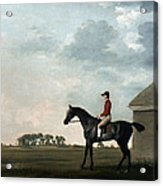 Stubbs: Gimcrack, 1765 Acrylic Print