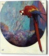 Study For Polly 1923 Acrylic Print