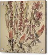 Study Of Flowers S Acrylic Print