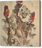Study Of Flowers Y Acrylic Print