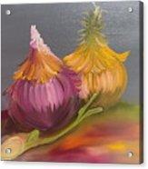Study Of Onions Acrylic Print