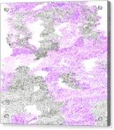 Study Purple And Gray Acrylic Print