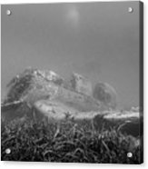stuka bomber wreck III Acrylic Print