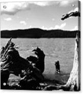 Stump Lake Acrylic Print