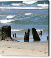 Stumpy Beach Acrylic Print