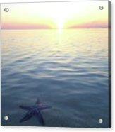 Stunning Eleuthera Sunset 2 Acrylic Print