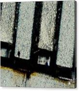 Subdivisions Acrylic Print
