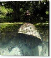 Submerged Acrylic Print