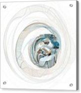 Subtleness Acrylic Print