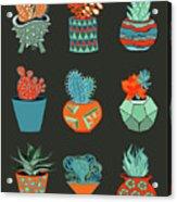 Succulent Garden No. 1 Acrylic Print