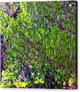 Sudden Downpour Acrylic Print