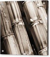 Sugar Cane - Sepia Acrylic Print