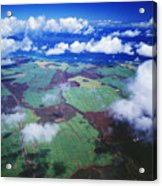 Sugarcane Fields In Central Maui Acrylic Print