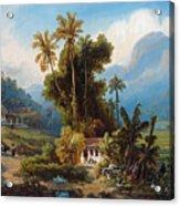 Sugarcane Plantation Of San Esteban Near Puerto Cabello, Venezuela Acrylic Print